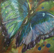Rachel Heu's Morpho Butterfly3