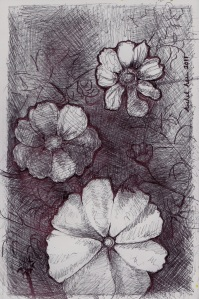 Rachel Heu's Cosmos Flowers Sketch in Ball Point Pen