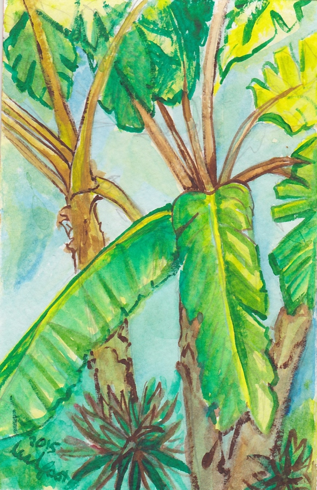 Watercolor_Tropical_2015_Rachel_Heu